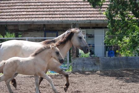 Nayla mit Nandor, ihrem Sohn