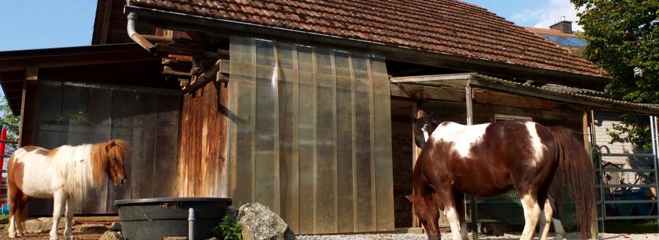 Das Separée der Ponies.